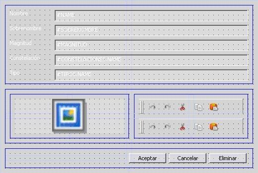 Configuración de Layouts en formularios 2