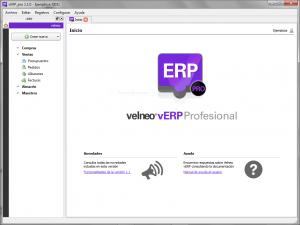 vERP_pro_principal