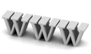 WWW: Wild Wide Web 1